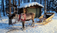 Trip-to-Lapland-With-Kids.jpg