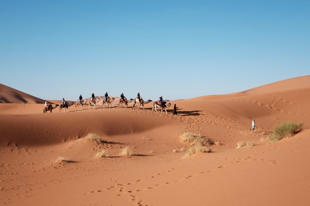 Things You Can Do In The Sahara With Your Family