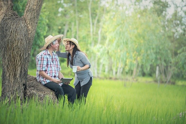 Expat Guide For Family Travel to East Asia