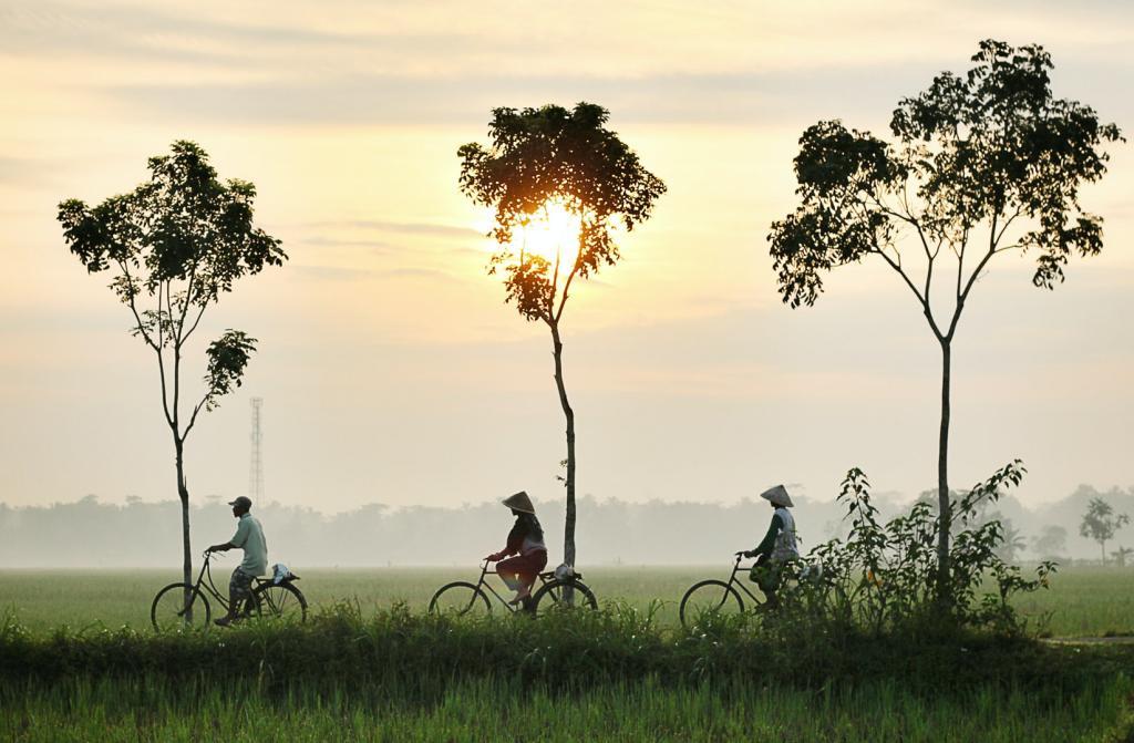 Cycle Through the Backstreets of Hanoi, Vietnam