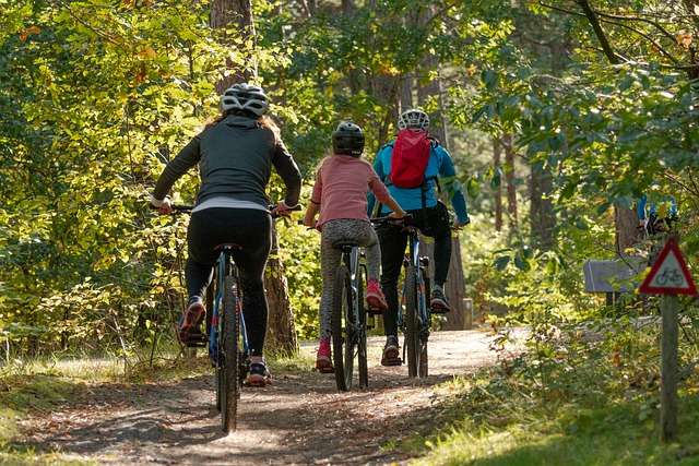 THE 10 BEST Sydney Bike Tours For Families With Kids